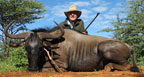 Hunting Africa Blue Wildebeest