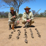 Sandgrouse Hunting