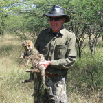 cheetah-hunting-017