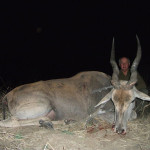 hunting-africa-0072