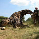 hunting-africa-0118