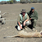 hunting-cheetah-009