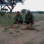 hunting-cheetah-011