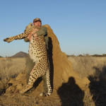 hunting-cheetah-021