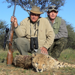 hunting-cheetah-027