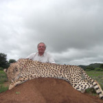 hunting-cheetah-029
