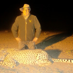 hunting-cheetah-035